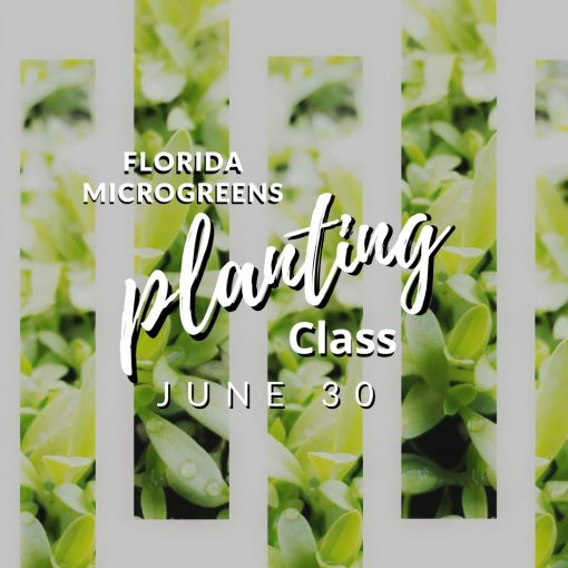 FLMG Planting Class June 30th