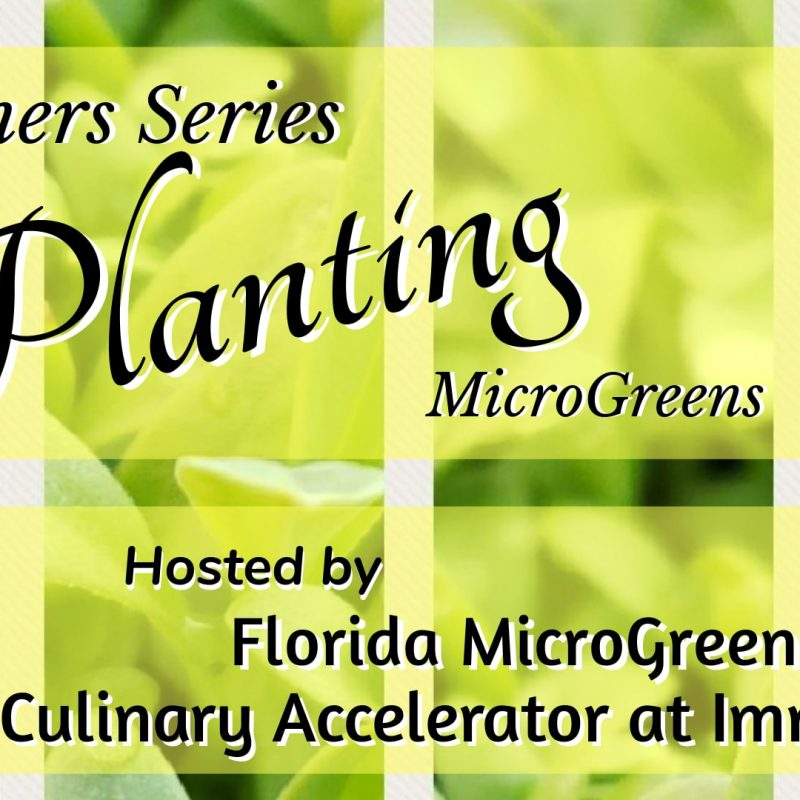 FLMG-beginners-series-planting-class-immokalee-culinary-accelerator