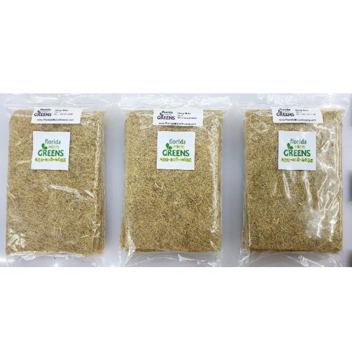 Florida Microgreens basic subscription hemp packs closeup