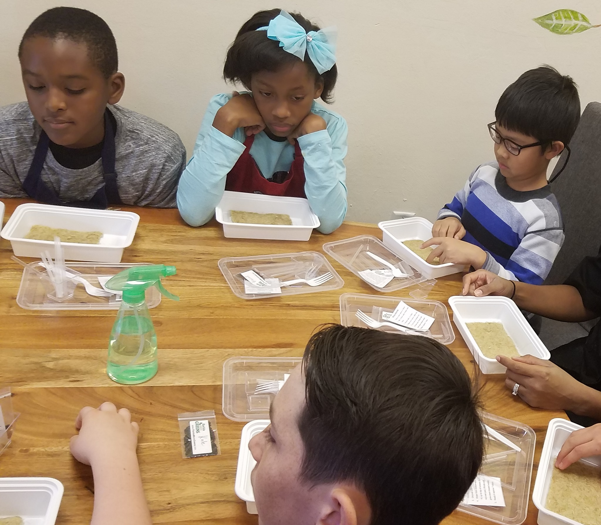 florida-microgreens-little-leaves-science-camp-picture-students